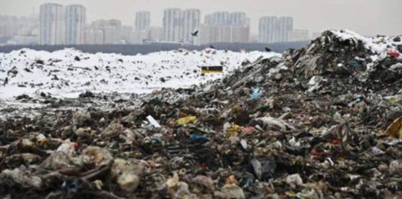 Жители подмосковного города сражаются с экологическим бедствием