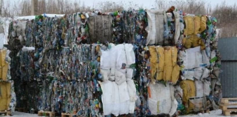 Жители Калуги будут принимать участие в экологической акции «Вместе в будущее»