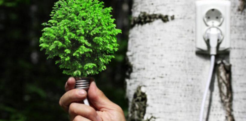 Форум на тему развития возобновляемых источников энергии состоится в Архангельске