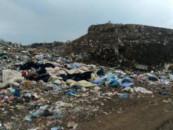 В Калининградской области стартовала проверка по факту размещения строительных отходов на свалке