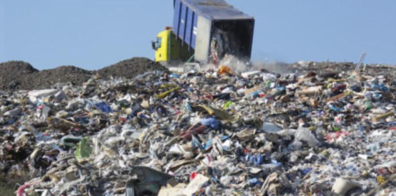 Экологи предупреждают, что расширение мусорного полигона спровоцирует экологическую катастрофу