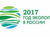Администрация Ростова-на-Дону подытожила реализованные за год экологические мероприятия