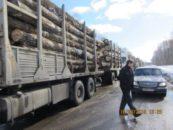 2 года назад лесозаготовителей обязали оформлять сопроводительную документацию при перевозках