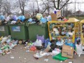 Фазы биохимических преобразований отходов на мусорной свалке