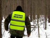Государственным лесным инспекторам будут помогать общественные лесные инспекторы