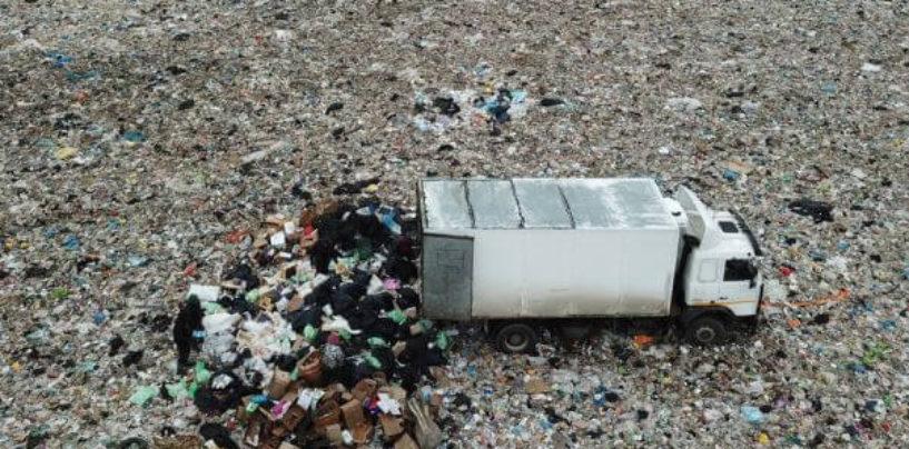 Камень преткновения в Каменке: горожане выступили против планов Смольного по строительству мусороперерабатывающих предприятий