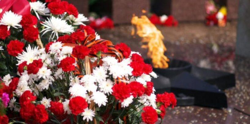 В Ростове стартовала акция «Цветок памяти»