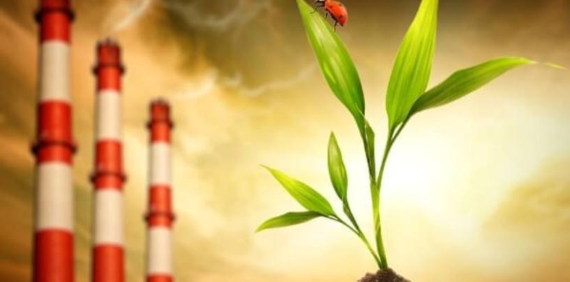 «Квадра» позаботится об экологии Тамбова на 2 млн рублей