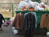 50% населения России удовлетворены состоянием экологии в своем городе
