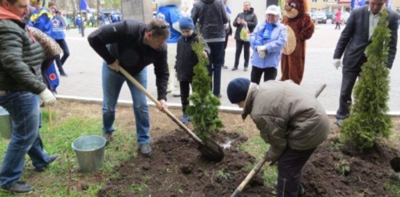 В Туле планируют высадить около 11 500 деревьев и 2 000 многолетних цветов в этом году