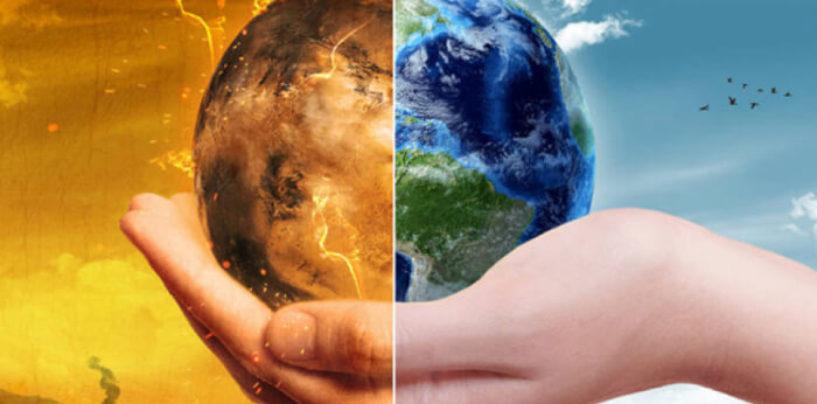 Что изучает экология и её значение