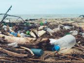 Жителям Гаити будут платить за собранные пластиковые отходы