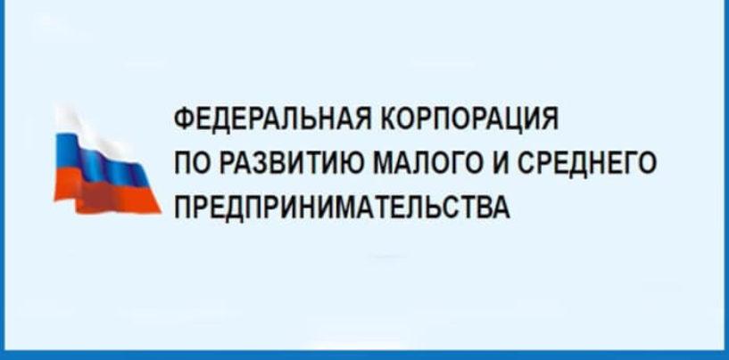 Для владельцев стартапов КМСП запущен специальный гарантийный продукт в размере до 500 мнл. рублей