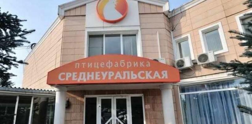 Птицефабрика может стать причиной экологической катастрофы в Свердловской области
