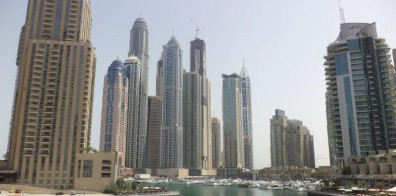 Адыгейские власти расширяют сотрудничество с ОАЭ и другими ближневосточными странами
