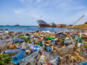 В Приморье нефтяное загрязнение морской воды превысило норму в 70 раз
