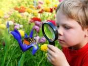 Телемост: дошкольники обсудили проблемы экологии