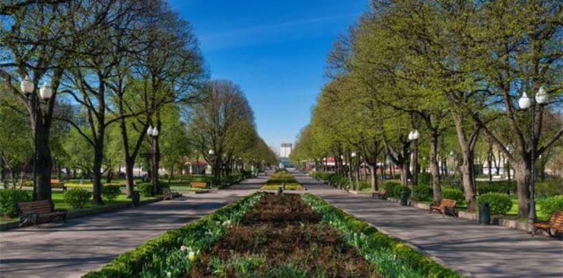 Зеленое обновление. Как восстановить экологию Москвы?