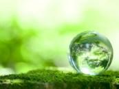 Главе администрации Заполярного досталось за экологию