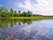 Берега рек и озер хочется сделать чище