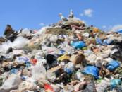 Под Ярославлем построят крупный мусороперерабатывающий завод