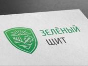 «Зелёный щит» могут создать в Дзержинске Нижегородской области