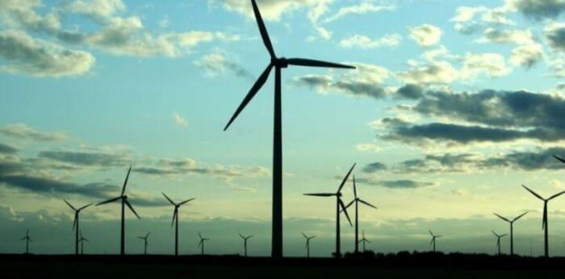 В ближайшие 5 лет в России будет полностью создана ветроэнергетическая индустрия