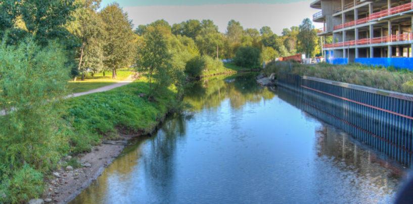 В Петербурге начинается очистка реки Смоленки