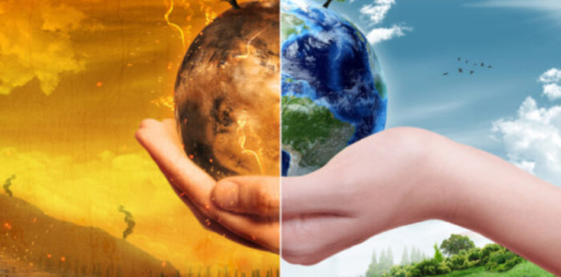 Экологическое лицедейство