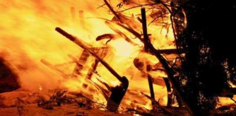 В Ленобласти выявили незаконное сжигание мусора