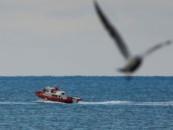 Осталось 15 лет: экологи предупредили о катастрофе в Черном море