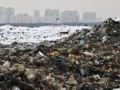 Подмосковные активисты нашли выход из «экологического тупика» и просят принять соответствующий закон