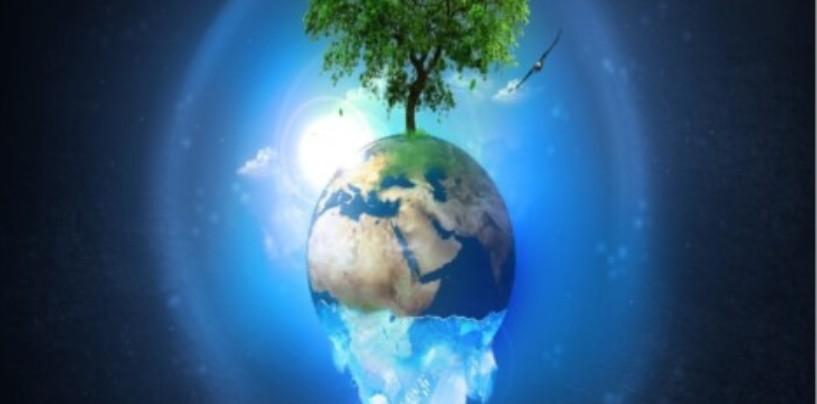 Общая масса людей равна 0,01% от всей биомассы живых существ на планете