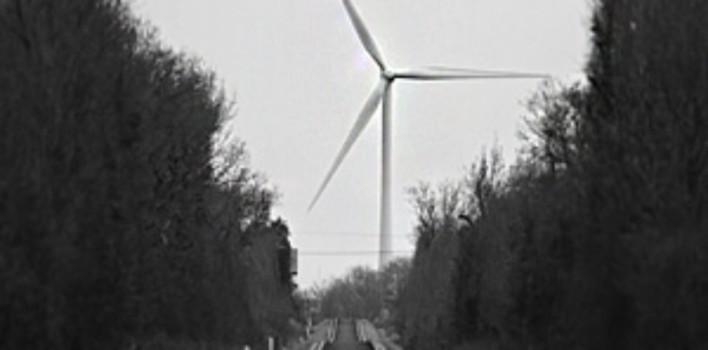 Начало конца ещё одной экологической сказки