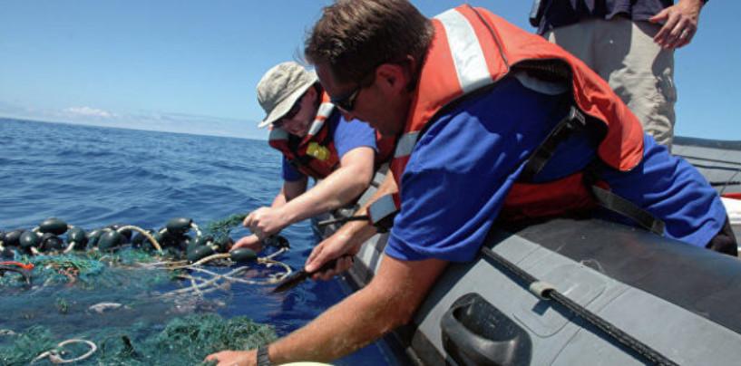 Ученые: Всего 13% мирового океана остались нетронутыми человеком