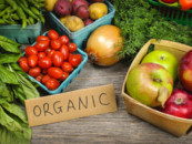 Принят федеральный закон, регулирующий производство «органической» продукции