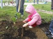 С 2019 года в Москве в честь каждого новорожденного будут высаживать именные деревья