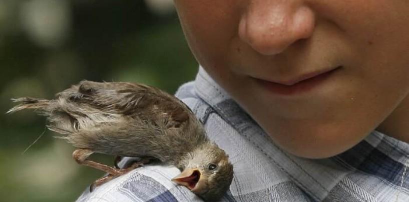 В России усиливается защита особо охраняемых природных территорий