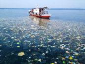 Миро: Пластиковое пятно в Мировом океане достигло размеров Франции