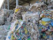 Смольный одобрил строительство мусорного завода в Каменке