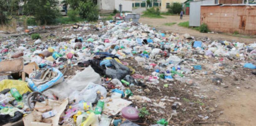 «Горячую линию» по уборке незаконных свалок открыла прокуратура в Чите