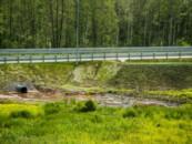 Строителей М-11 в очередной раз оштрафовали за вред экологии