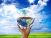 Нацпроект «Экология» противоречит поручениям президента – экоактивисты