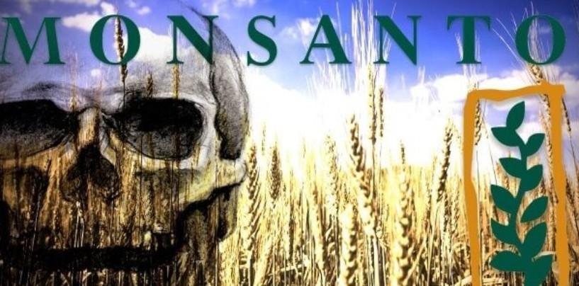 Американцы массово судятся с Monsanto