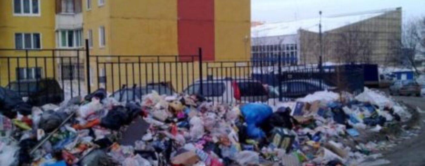 Столичный мусор вывезут в отдаленные российские регионы