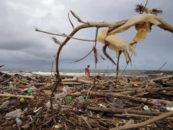 Для предотвращения экологической катастрофы нужно предпринять 3 важные меры