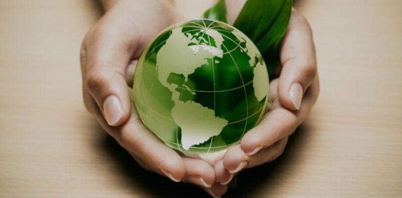 Общее финансирование нацпроекта «Экология» может составить 4 трлн руб. на шесть лет