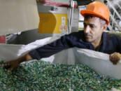 Экологи требуют повысить налоги для производителей пластика