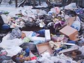 Проблема бытовых отходов в России