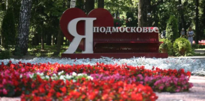 Экс-министр экологии Подмосковья: регион создал базу для новой системы обращения с ТБО